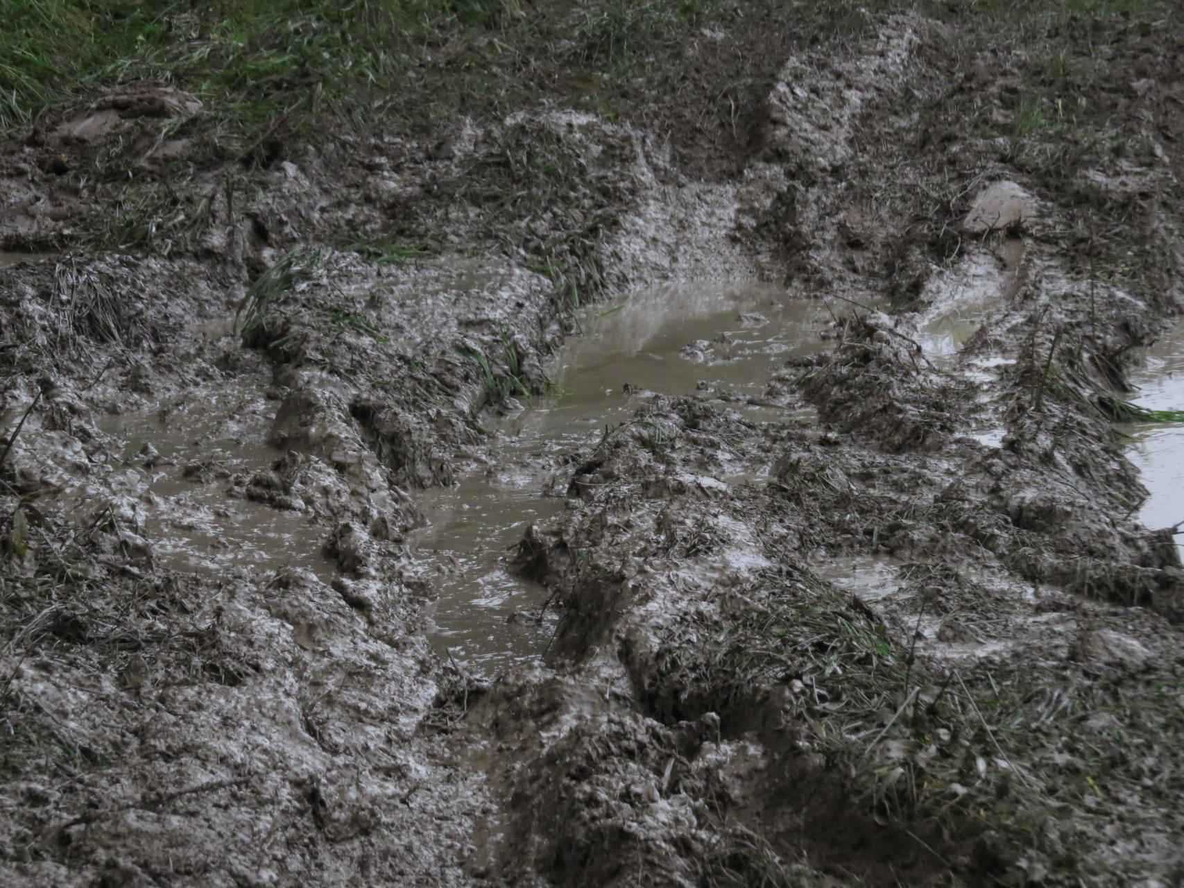 грязька