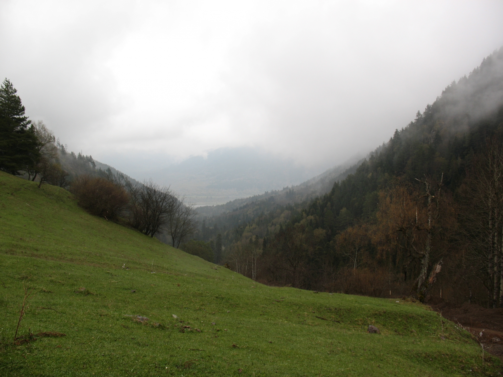 Кавказ 2010