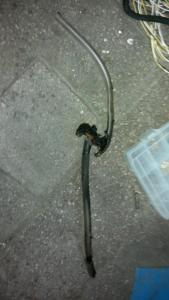post-1237-0-45101800-1384466602_thumb.jp