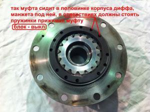 post-71-0-42364400-1356558388_thumb.jpg
