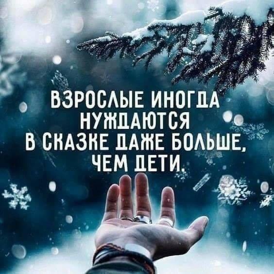 126164552_3872246046148026_5365903628541258132_n.jpg